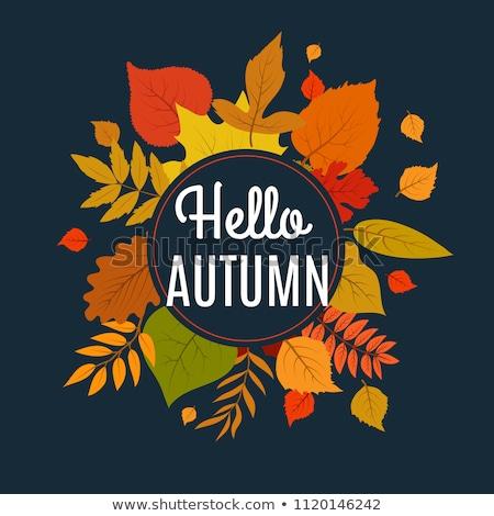 Stock fotó: Floral Frame Sign Hello Autumn