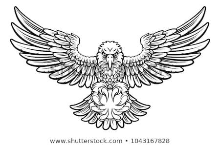 Foto stock: Eagle Cricket Sports Mascot