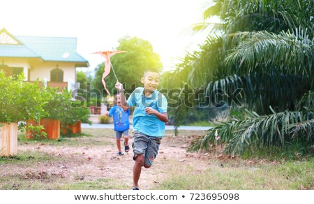 Dois meninos voar pipa criança jovem Foto stock © IS2
