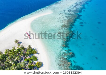 amazing tropical island with sandy beach palms trees reef and stock photo © taiga