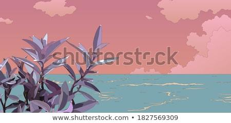 美しい · ベクトル · 風景 · 海 · 山 - ストックフォト © tracer