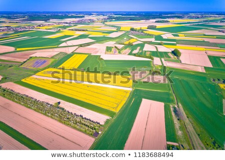 Agriculture layers of Podravina region aerial view Stock photo © xbrchx