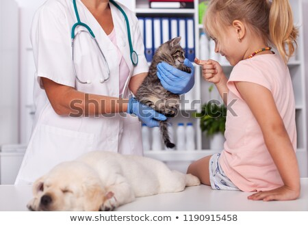 Stockfoto: Little Girl At The Animal Shelter Checking Out The Baby Animals