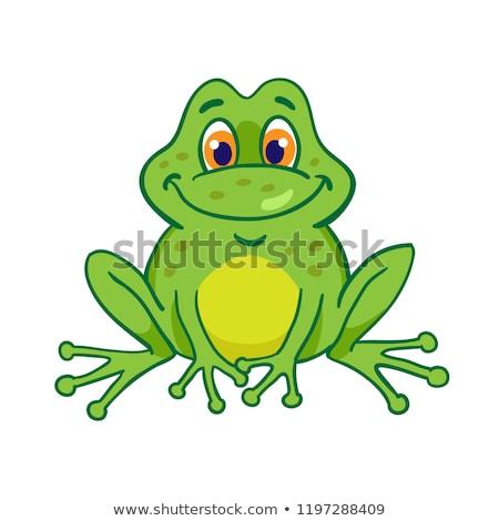 Cute cartoon kikker mascotte karakter witte Stockfoto © doomko