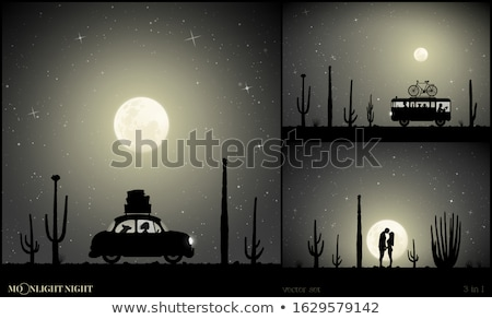 Moonlit night in the mexican desert Stock photo © liolle
