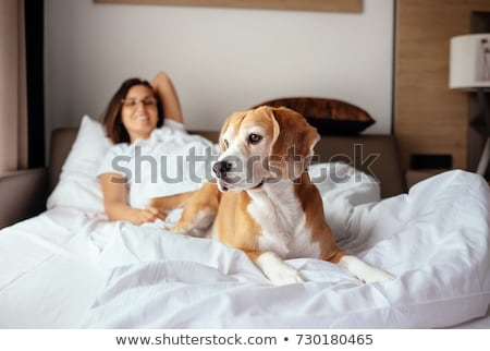 woman lying with her dog on bed stock photo © kzenon