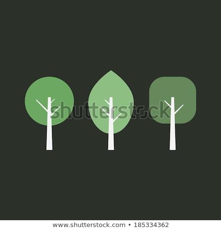floreale · set · impianti · erbe · foresta · natura - foto d'archivio © decorwithme