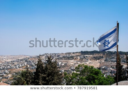 House with flag of israel Stock photo © MikhailMishchenko