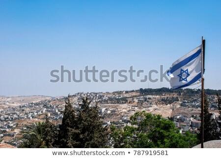 Ev bayrak İsrail beyaz evler Stok fotoğraf © MikhailMishchenko