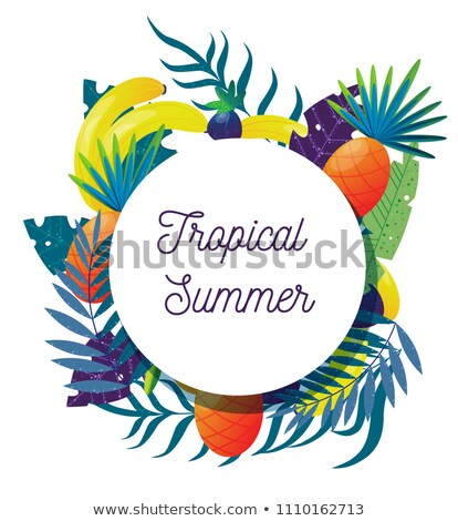 Pina tropicales planta frutas anunciante marco Foto stock © robuart