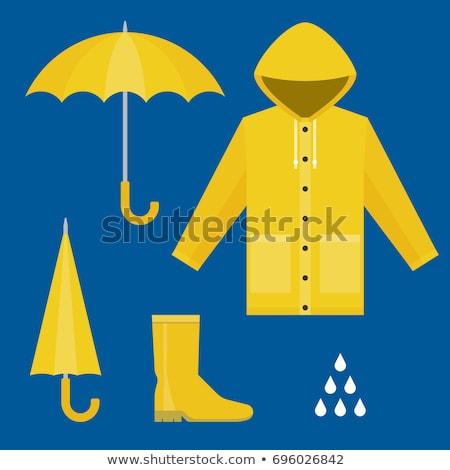 Projeto ícone capa de chuva ui cores natureza Foto stock © angelp