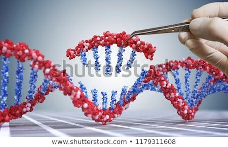 Gen genetisch engineering therapie dna 3d illustration Stockfoto © Lightsource