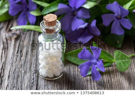 A bottle of homeopathic pills with vinca minor plant Stock photo © madeleine_steinbach