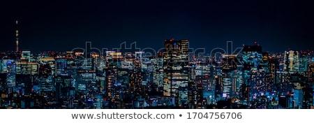 Night skyline of Tokyo city from a skyscraper. Stock photo © alphaspirit