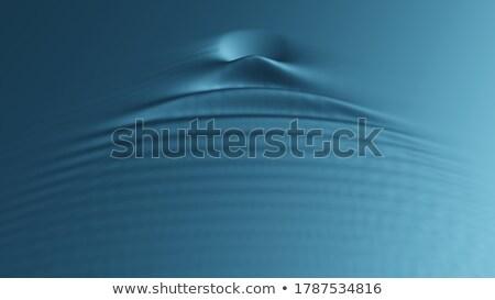 Gölet doğa sahne örnek yaprak Stok fotoğraf © bluering
