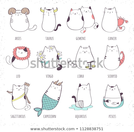 Vecteur cute zodiac signe constellation clipart Photo stock © VetraKori