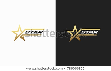 star logo graphic design template vector stock photo © haris99