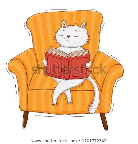 cute · orso · lettura · libro · cartoon - foto d'archivio © amaomam