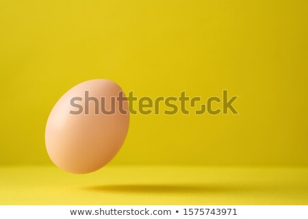 Chicken Egg Falling On Ground Against Yellow Background Stock photo © diego_cervo