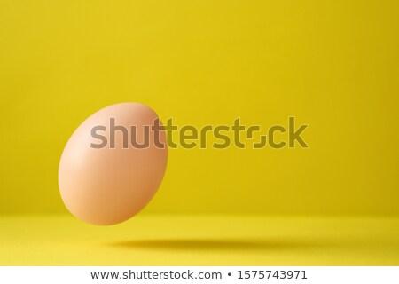Poulet oeuf relevant sol jaune espace Photo stock © diego_cervo