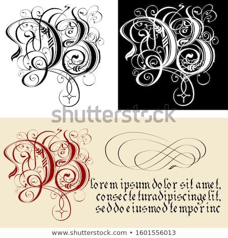 Decorativo gothic lettera calligrafia vettore eps8 Foto d'archivio © mechanik