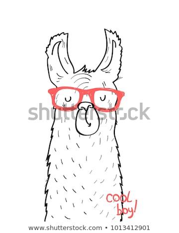 Peru hand drawn cartoon doodles illustration. Funny design. Stock photo © balabolka