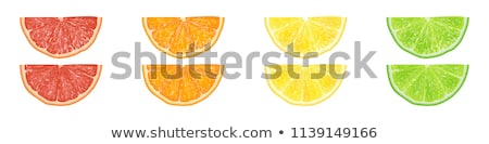 vector lime, lemon, grapefruit and orange slices  Stock photo © freesoulproduction
