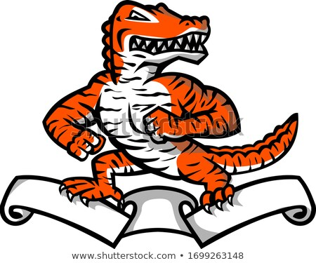 Aligator bengalski Tygrys maskotka ikona Zdjęcia stock © patrimonio