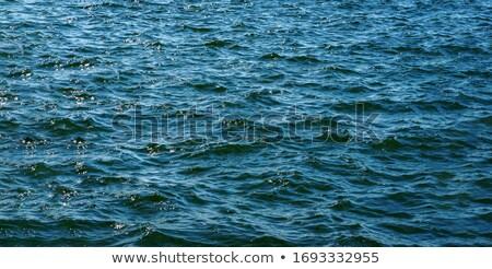 Niebieski wzór wody Ripple szeroki Zdjęcia stock © evgeny89