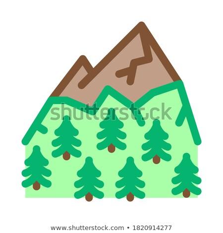 Montana vegetación icono vector ilustración Foto stock © pikepicture