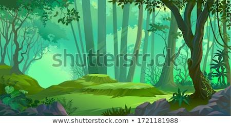Zielone dżungli pozostawia kwiaty ilustracja Zdjęcia stock © jossdiim