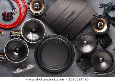 Araba ses telleri beyaz siyah Stok fotoğraf © papa1266