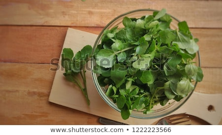 Watercress (Nasturtium officinale) Stock photo © rbiedermann