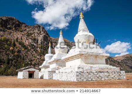 Biały pagoda świątyni drzewo ogród Chmura Zdjęcia stock © Archipoch