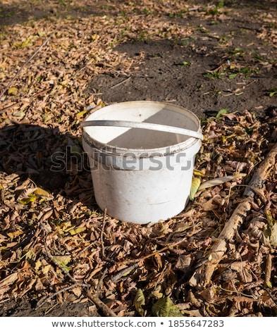 Velho balde enferrujado verão casa de campo jardim Foto stock © bendzhik