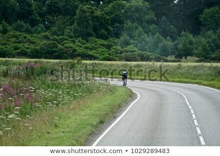 Gyönyörű út magányos kerékpáros vidék fű Stock fotó © Julietphotography