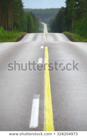 estrada · floresta · região · brilhante · blue · sky - foto stock © tomistajduhar