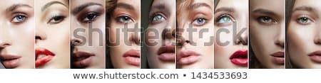 bőr · szög · törődés · jelentkezik · átlátszó · fényezés - stock fotó © photography33