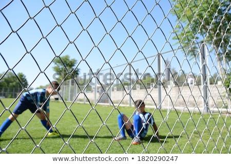 łańcucha · link · ogrodzenia · lesie · Błękitne · niebo - zdjęcia stock © sirylok
