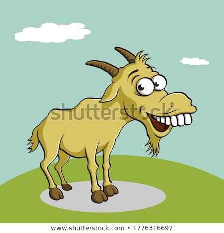 Funny goat  Stock photo © kornienko