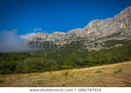 limestone ridge Stock photo © taviphoto