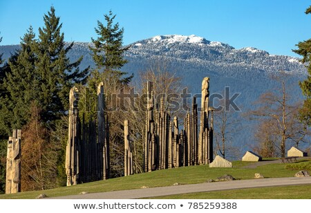 горные парка весны древесины природы пейзаж Сток-фото © deymos