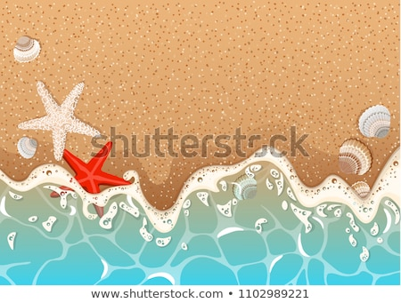 Sandy Beach and Foamy Surf Stock photo © maxpro
