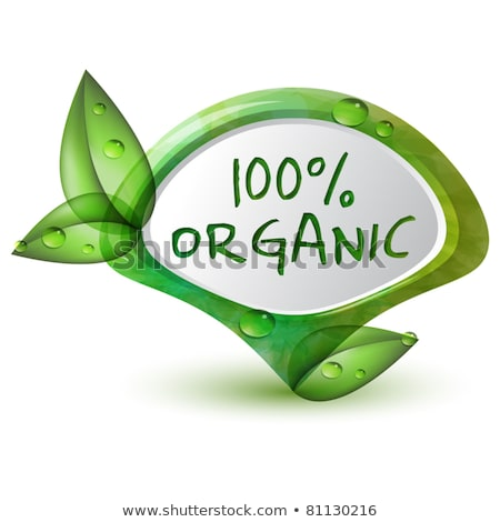 Foto stock: Vector Organic Product Labels Illustration With Shiny Design