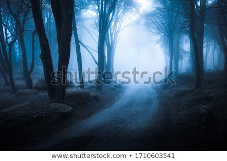 Stock photo: Evening Landscape in the mist