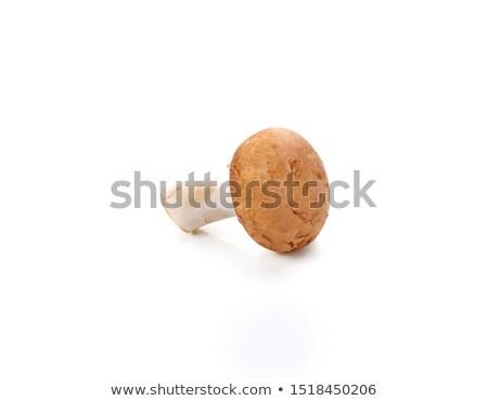 Brown champignon mushroom and rosemary leaves Stock photo © natika