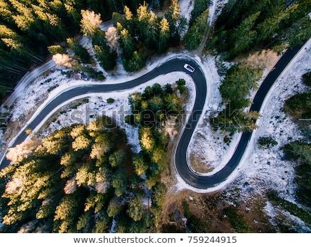 vlucht · berg · bos · luchtfoto · bergen - stockfoto © joyr