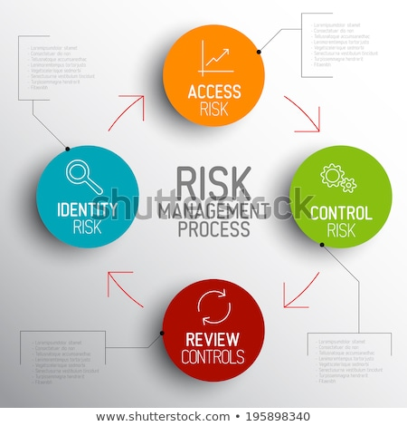 Vector light Risk management process diagram schema Stock photo © orson