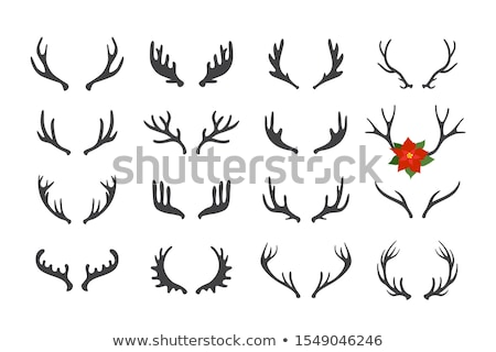 Christmas deer antlers, vector set Stock photo © beaubelle