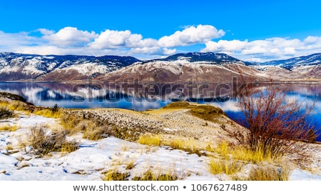 Thompson River in Central British Columbia Stock photo © hpbfotos